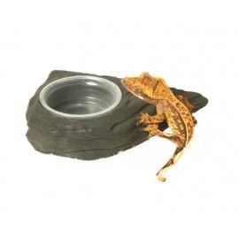 Pangea Mini Magnetic Gecko Feeder Ledge