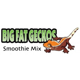 Big Fat Gecko Smoothie Mix