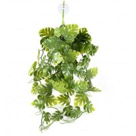 Pangea hanging plant - Green