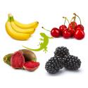 Reptile Supplies Gecko Diet 4 x 25g Sample Bags - Set 5
