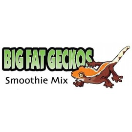 Big Fat Gecko Smoothie Mix - Green Bag