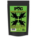 PIG Pangea Insect Grub